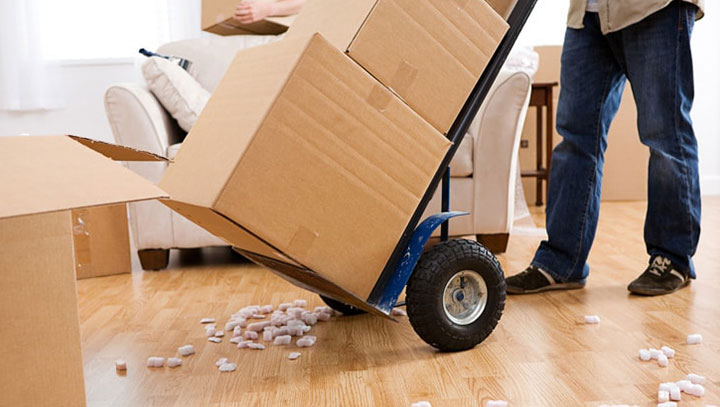 AmberLina-Courier-Logistics-Services-Express-Courier-Delivery-Removal-Services-720px.jpg