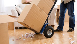 AmberLina-Courier-Logistics-Services-Express-Courier-Delivery-Removal-Services-300px